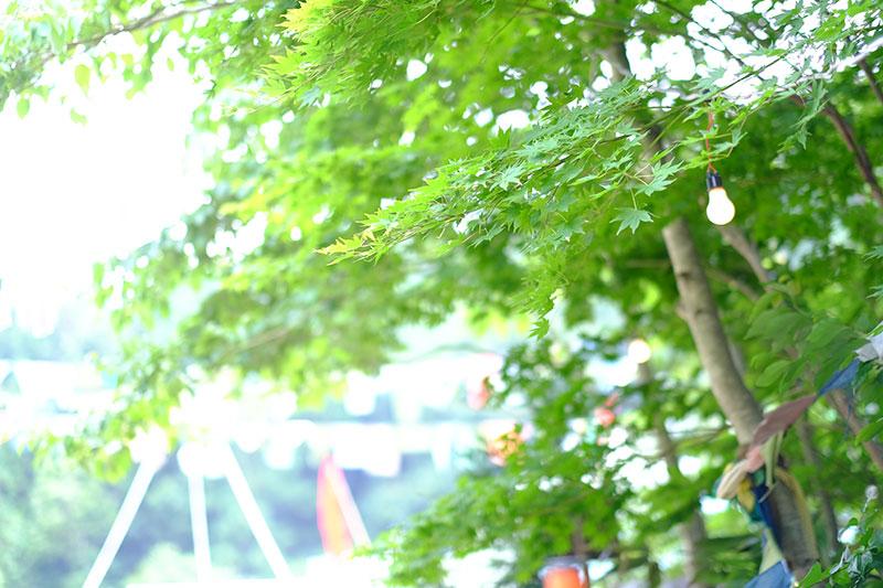 6DSCF96832 【フォトレポ】フジロッカー平井理央が撮るフジロック